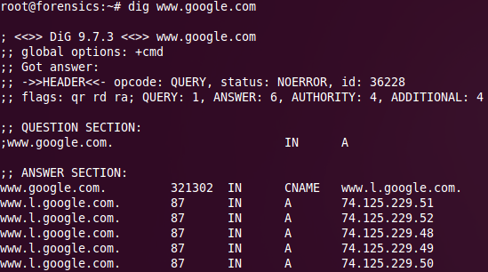Correct IP address for google